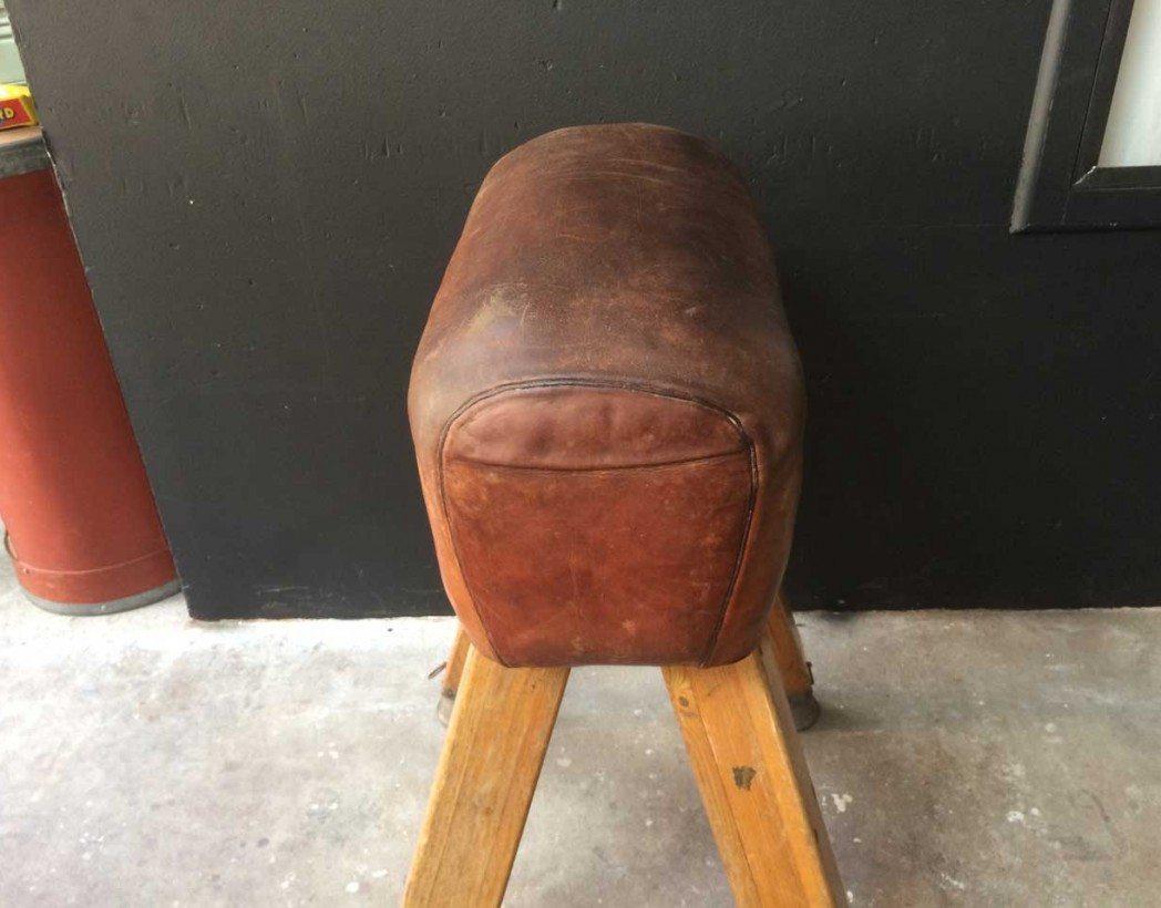 cheval-arcon-cuir-vintage-5francs-61